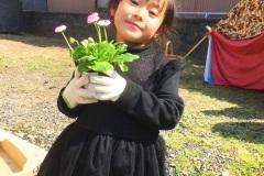 dandelion-english-school-11